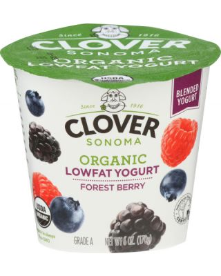 Forest Berry Low Fat Yogurt