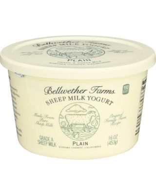 Sheep Milk Yogurt Plain