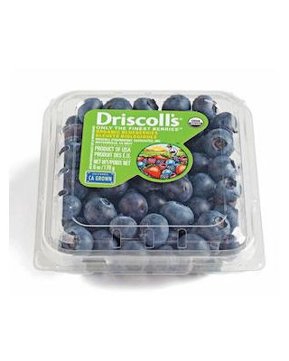 Blueberries Small