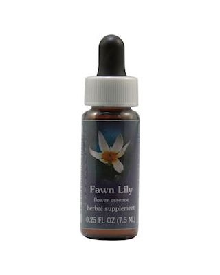Fawn Lily Dropper
